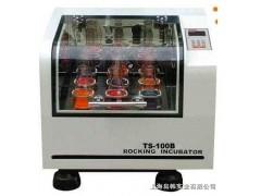 TS-100C恒温摇床 恒温振荡器 振荡培养箱