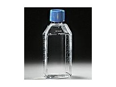 细胞培养瓶 通气盖,353108,bd falcon