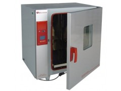 BGZ-246电热鼓风干燥箱/上海博迅BGZ-246