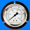 轴向带边压力表|带边压力表|弹簧管压力表|压力表型号