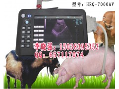 动物B超,动物B超测孕仪,兽用B超机