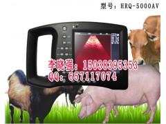 国产*先进的动物B超机HRQ-5000AV