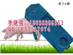 兽用A超,猪用A超测孕仪