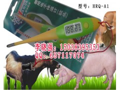 兽用电子体温计,兽用电子体温计价格,HRQ-A1