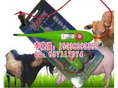 猪用电子体温计,猪用电子体温计价格,HRQ-A2