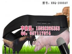 国产*便宜的猪用B超机价格猪用B超厂家图片