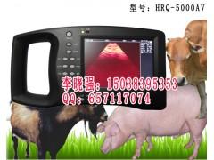 国产*先进的猪用彩超厂家直销供应价格图片