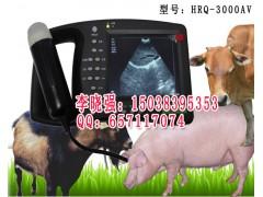 兽用手持式B超机HRQ-3000AV,兽用B超机价格