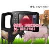 动物B超猪场测试图,猪用B超实用方法