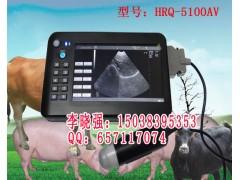 云南猪牛羊动物b超测孕仪,兽用b超厂家报价