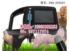 河北邢台供应国产黑白小型兽用B超测孕仪动物B超