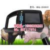 河南邢台供不应求土产亮鲜红轻型兽用B超测孕仪植物B超