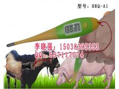 兽用电子体温计,兽用电子体温表,兽用电子温度表
