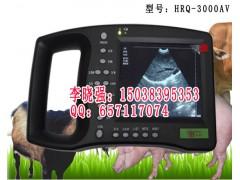 河北沧州兽用B超机厂家直销,动物B超供应价格