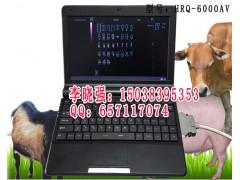 便携式笔记本动物B超价格,兽用B超厂家直销报价