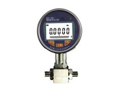 RJ-301数字差压表,在线式数字差压压力表