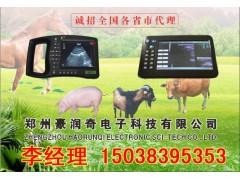 奶牛B超测孕仪检测母牛是否怀孕的仪器