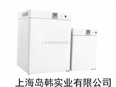 电热恒温培养箱 恒温培养箱 上海恒温培养箱