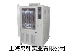 恒定湿热试验箱 恒温恒湿试验箱 上海试验箱