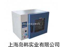 250℃台式鼓风干燥箱 DHG电热恒温鼓风干燥箱9003系列