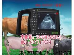 河北沧州兽用B超机,便携式B超机价格