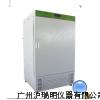 LHS-HC恒温恒湿箱(内加湿)