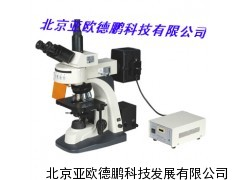 DP-300显微镜     荧光显微镜/亚欧荧光显微镜
