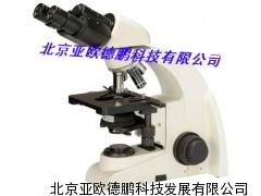 DP-6C双目生物显微镜 生物显微镜/亚欧生物显微镜