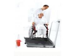 邢台轮椅电子磅,进口300KG透析电子称报价