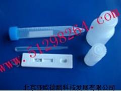DP-YS盐酸克仑特罗(瘦肉精)检测试剂条