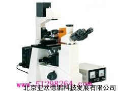 倒置荧光显微镜(四色激发)/荧光显微镜