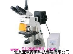 荧光显微镜(双色激发)/显微镜