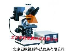 DP-150荧光显微镜(双色激发)/显微镜