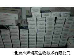 上海大龙单道移液器厂家价格