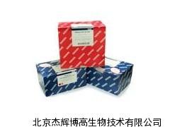 Qiagen EpiTect 59104报价
