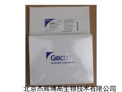 高品质现货 Gibco DMEM/F12 干粉培养基 价格