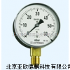 DP--YE-100膜盒壓力表/壓力表