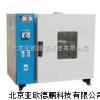 DP-FX202-00電熱恒溫干燥箱