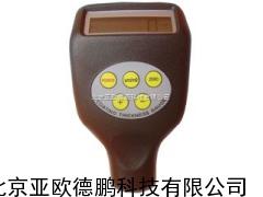DP-BIG083F/NF/2涂层测厚仪/涂层测厚计