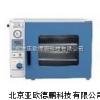 DP-DZF-6020真空干燥箱//干燥箱