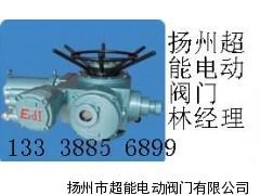 DZWB45.DZWB60隔爆电动装置