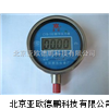 DP-CYB-107帶背光燈型數字壓力表/壓力表