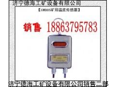 供应德海牌GWB85矿用温度传感器