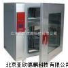 电热恒温培养箱/电热恒温培养仪