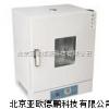立式電熱鼓風干燥箱/恒溫干燥箱