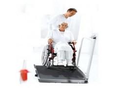 透析电子轮椅秤,病床医疗秤,电子医疗秤