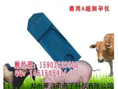 兽用A超,动物A超测孕仪,测孕检测仪