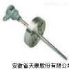 WZPK- 440防爆法兰热电阻(偶)