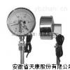 WSS双金属温度计价格