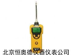 可燃气体检测仪/便携式可燃气体检测仪